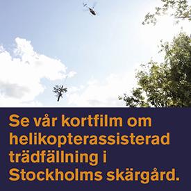 banner 275x275-heli-SV