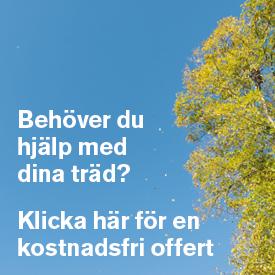banner-offert